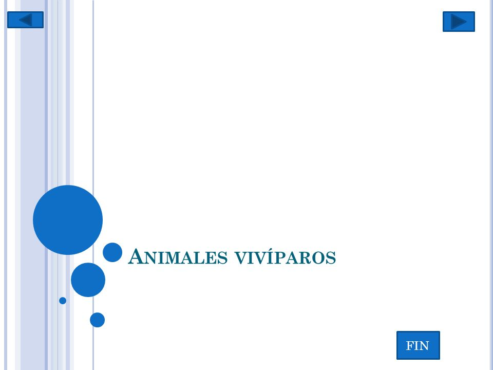 Animales vivíparos FIN