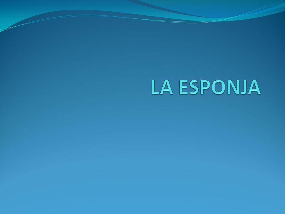 LA ESPONJA