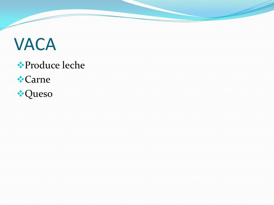 VACA Produce leche Carne Queso