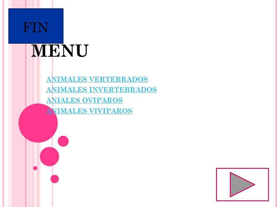 MENU FIN ANIMALES VERTEBRADOS ANIMALES INVERTEBRADOS ANIALES OVIPAROS