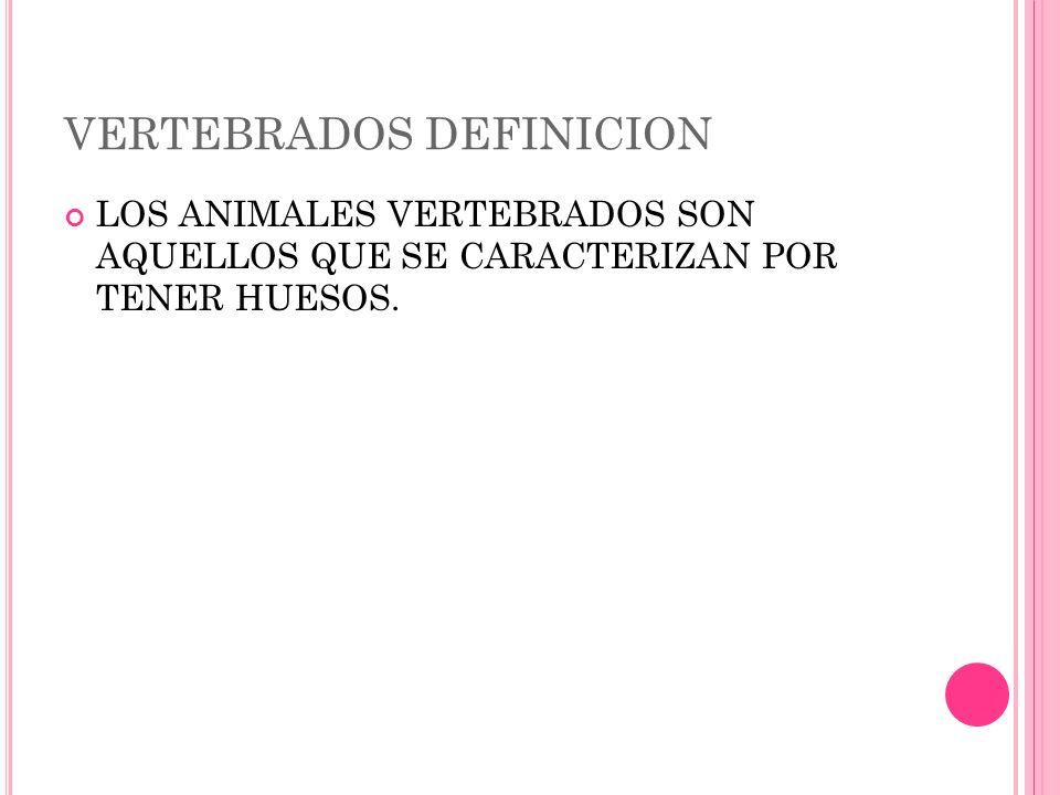 VERTEBRADOS DEFINICION