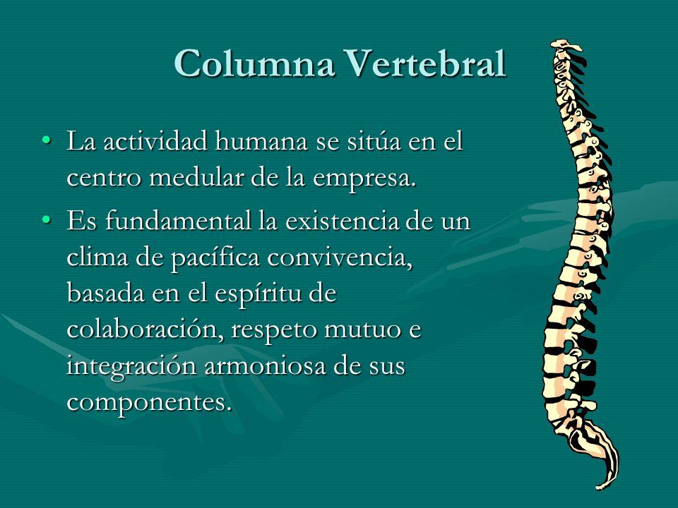 Columna Vertebral La actividad humana se sitúa en el centro medular de la empresa.