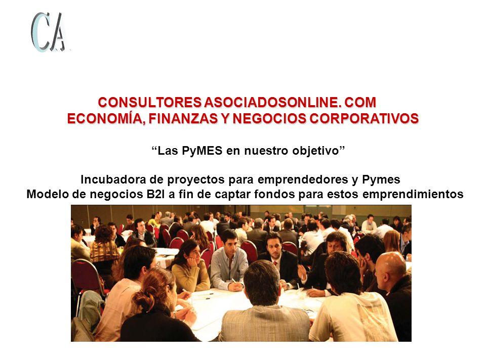 CONSULTORES ASOCIADOSONLINE. COM