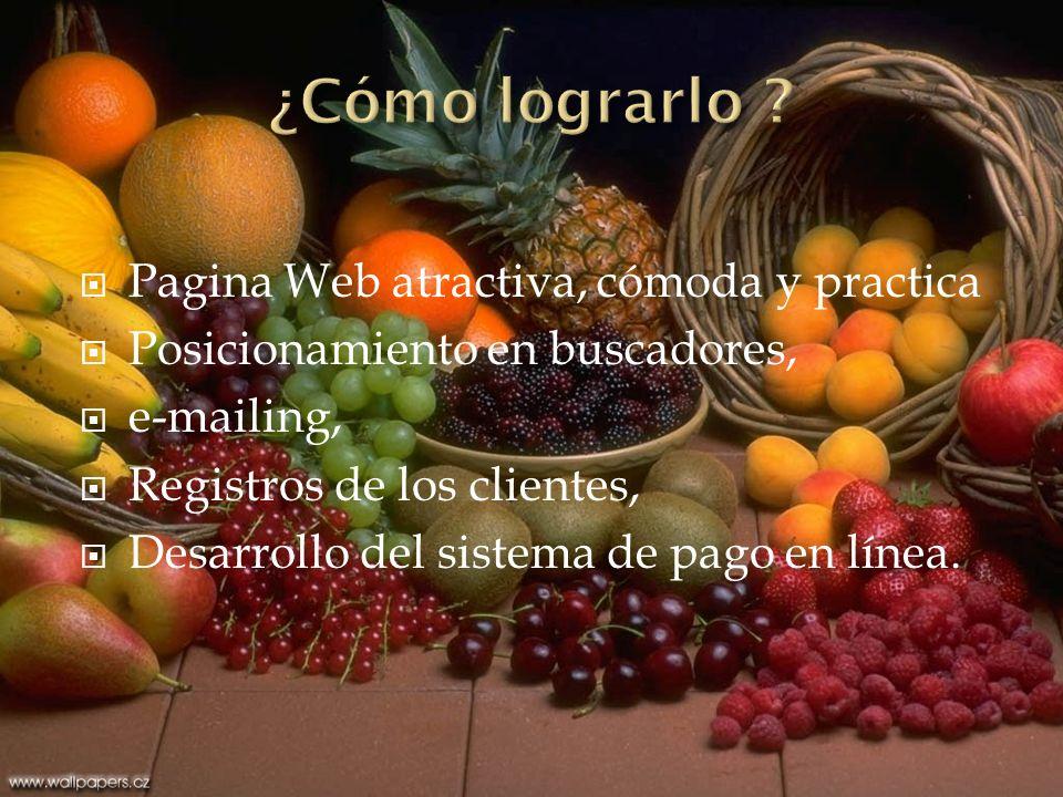 ¿Cómo lograrlo Pagina Web atractiva, cómoda y practica