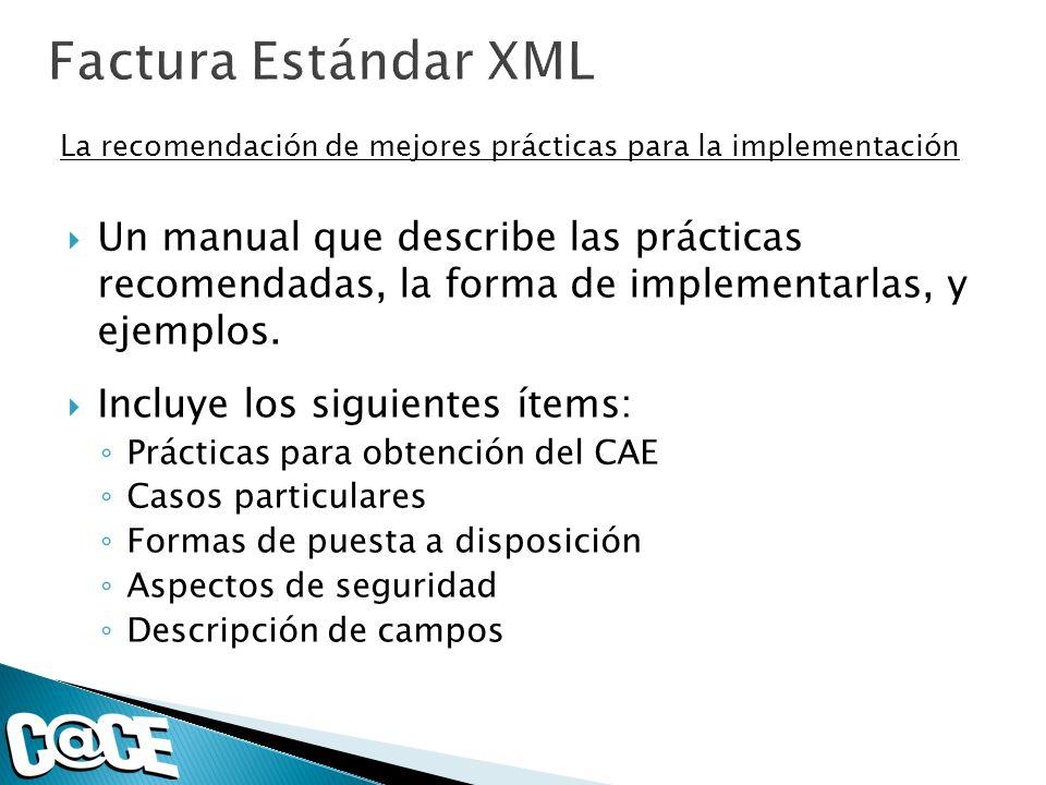 Factura Estándar XML La recomendación de mejores prácticas para la implementación.