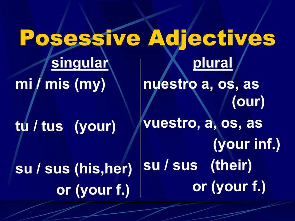 Posessive Adjectives singular mi / mis (my) tu / tus (your)