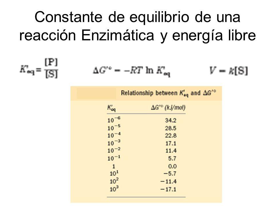 Constante de equilibrio de una reacción Enzimática y energía libre