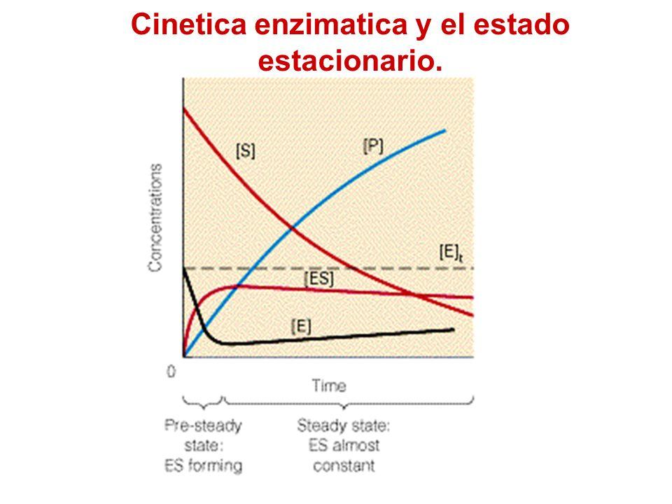 Cinetica enzimatica y el estado estacionario.