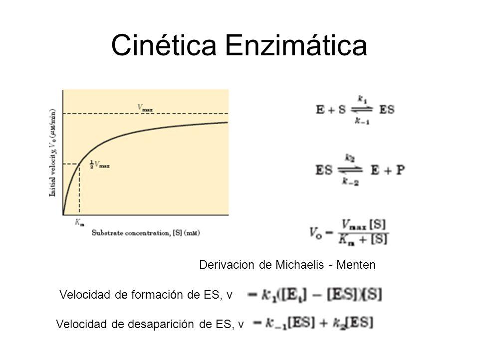 Cinética Enzimática Derivacion de Michaelis - Menten