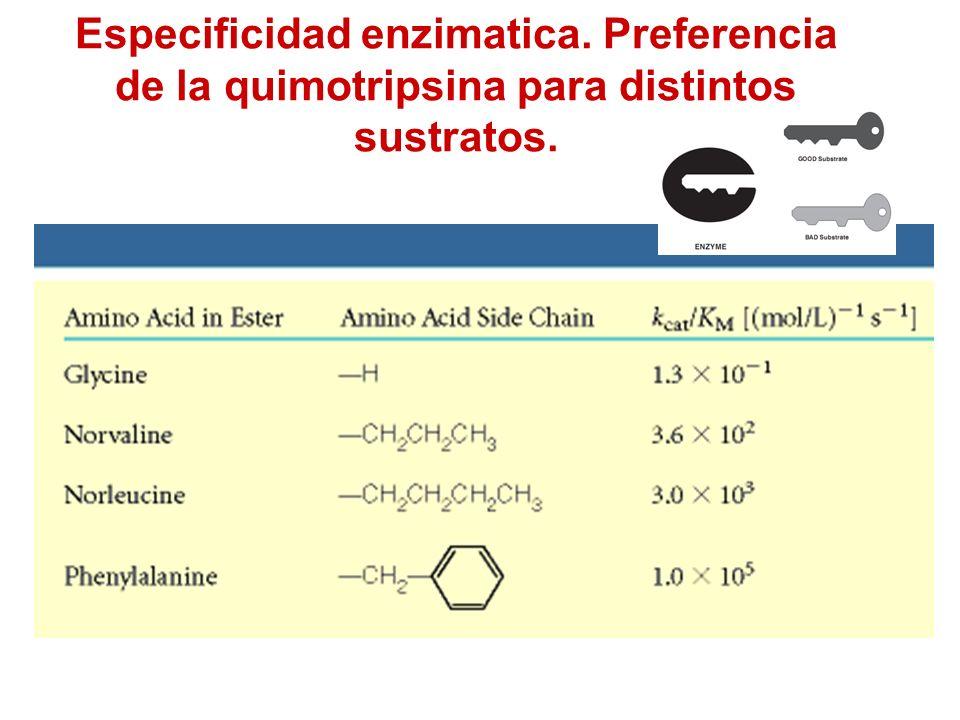 Especificidad enzimatica