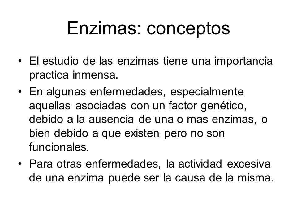 Enzimas: conceptos El estudio de las enzimas tiene una importancia practica inmensa.