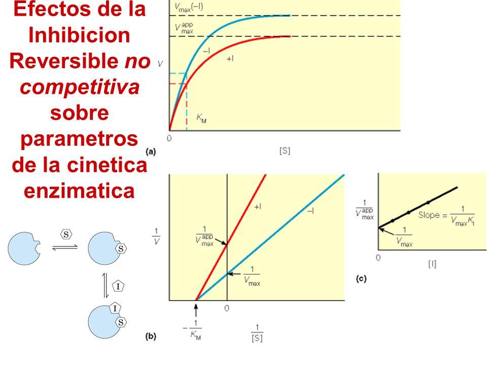 Efectos de la Inhibicion Reversible no competitiva sobre parametros de la cinetica enzimatica