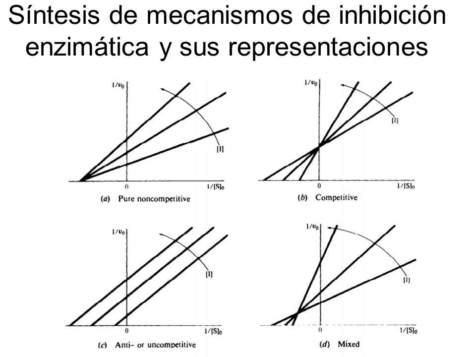 Síntesis de mecanismos de inhibición enzimática y sus representaciones