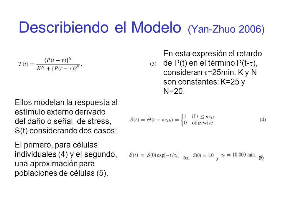 Describiendo el Modelo (Yan-Zhuo 2006)