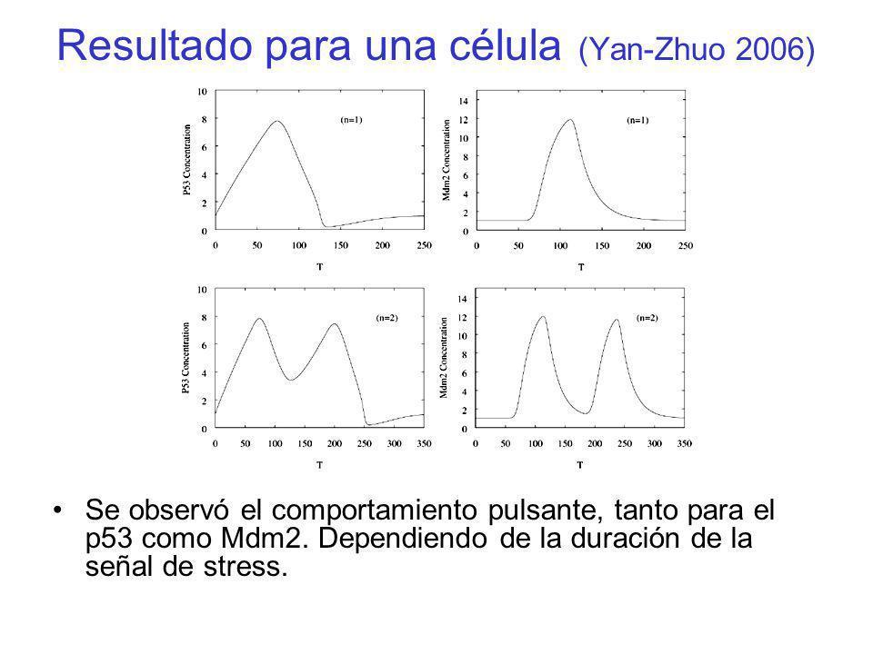 Resultado para una célula (Yan-Zhuo 2006)