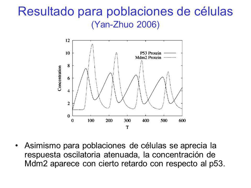 Resultado para poblaciones de células (Yan-Zhuo 2006)
