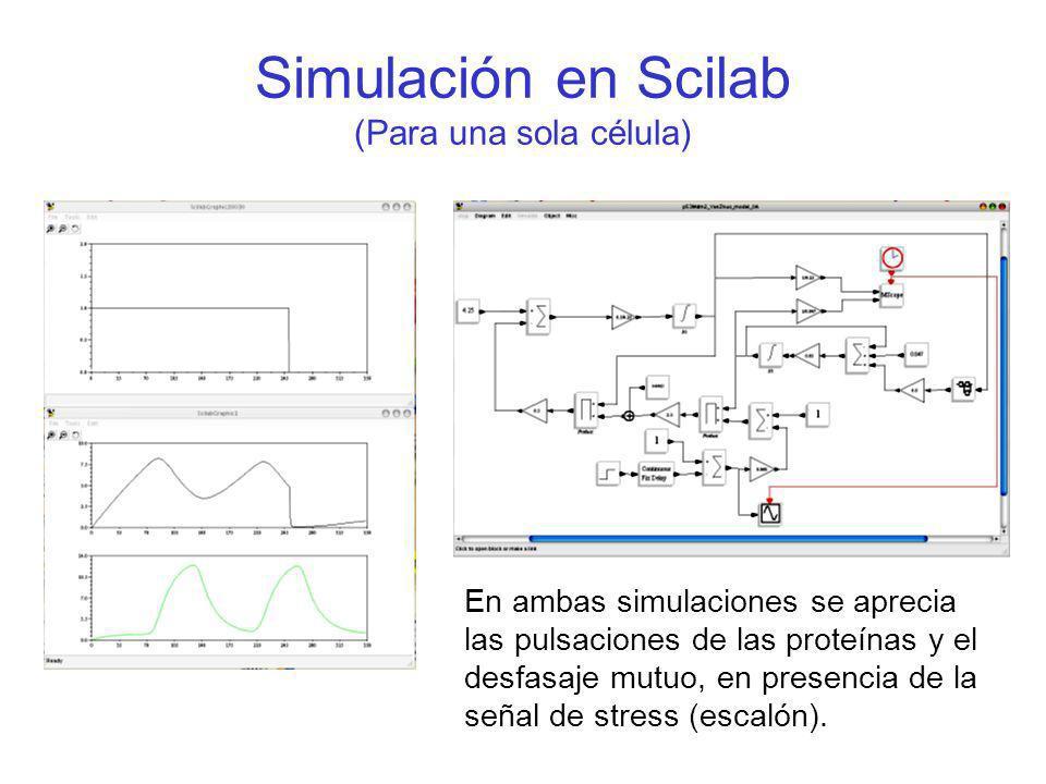 Simulación en Scilab (Para una sola célula)