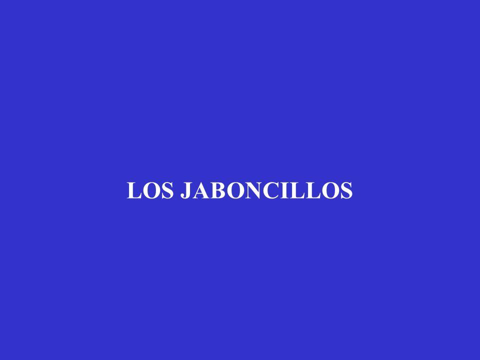 LOS JABONCILLOS