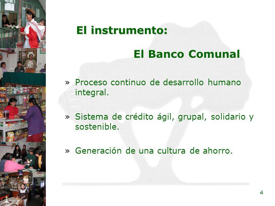 El instrumento: El Banco Comunal