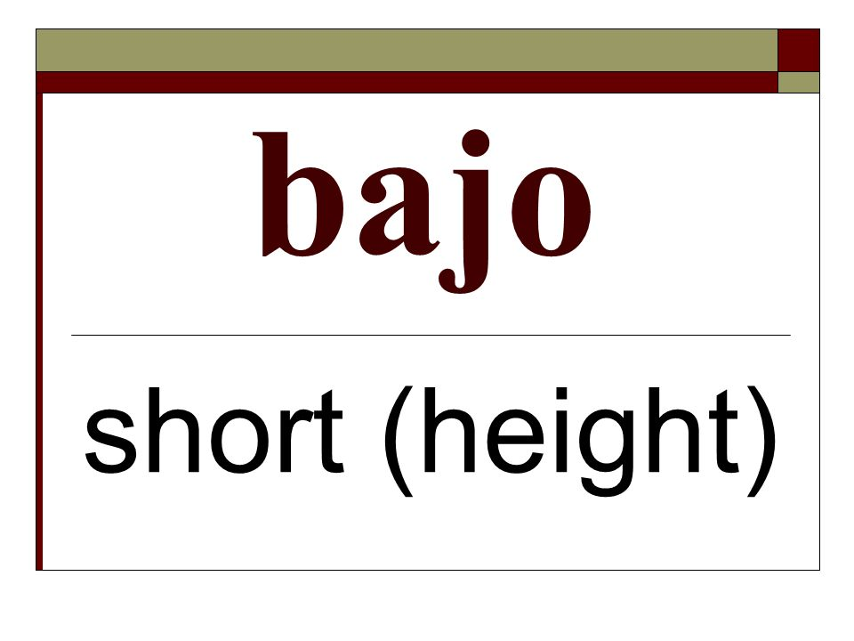 bajo short (height)