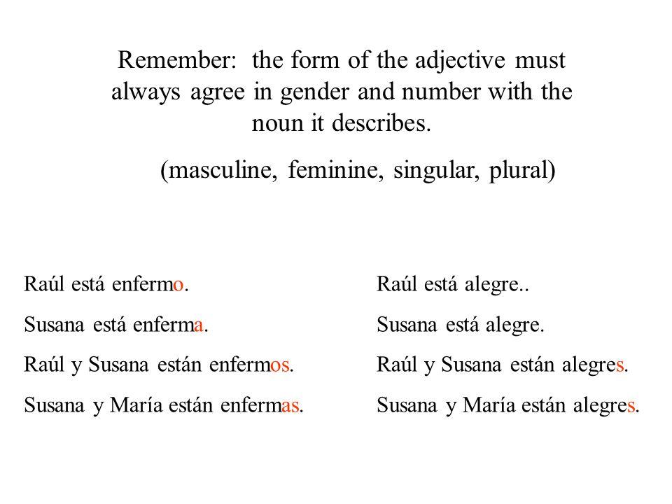 (masculine, feminine, singular, plural)