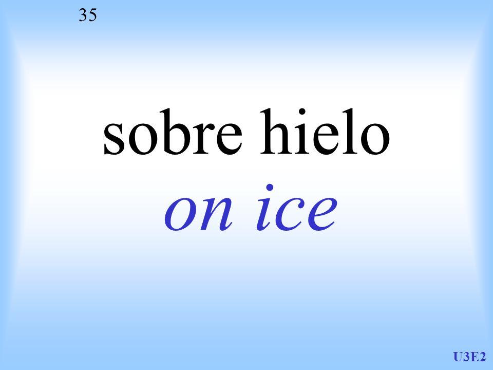 sobre hielo on ice U3E2