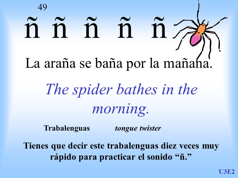 La araña se baña por la mañana.