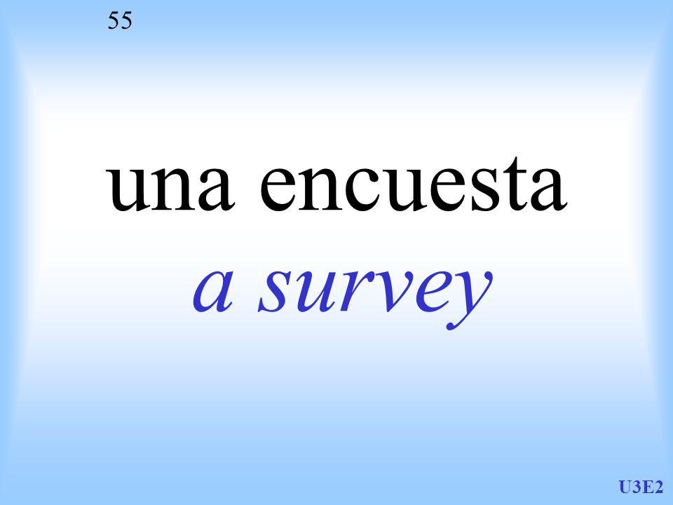 una encuesta a survey U3E2