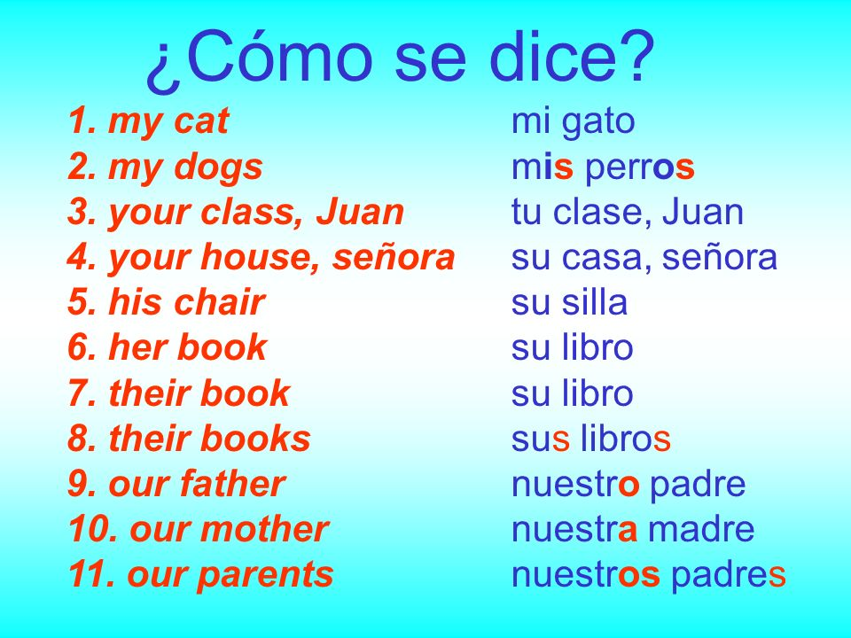 ¿Cómo se dice 1. my cat 2. my dogs 3. your class, Juan