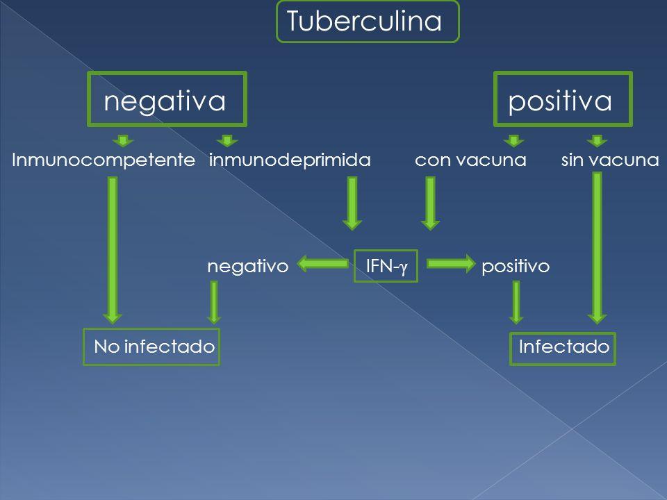 Tuberculina negativa positiva