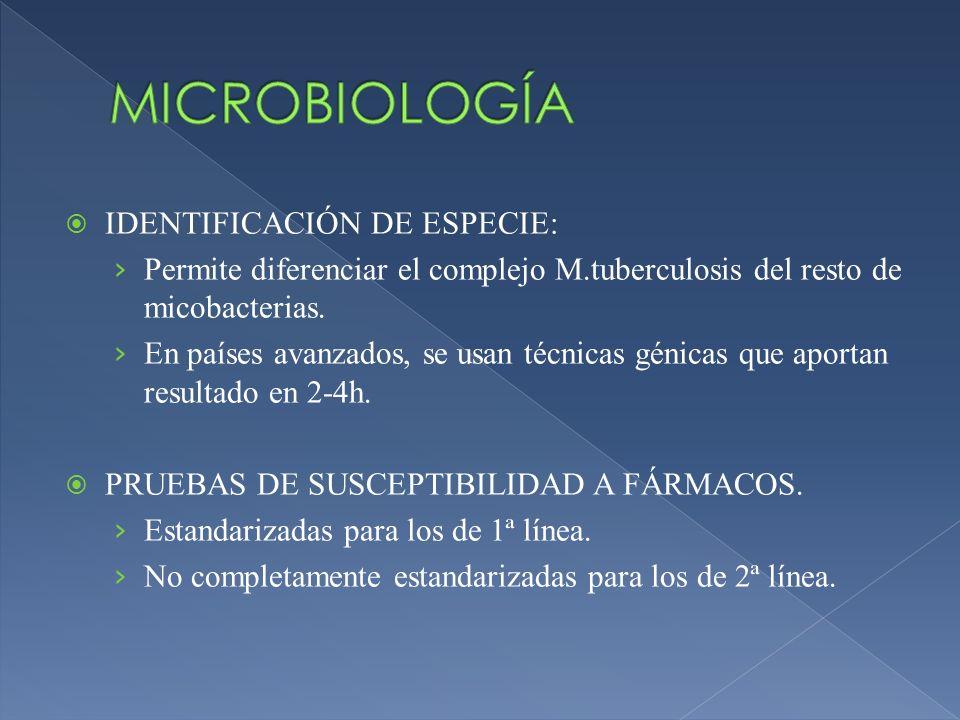MICROBIOLOGÍA IDENTIFICACIÓN DE ESPECIE: