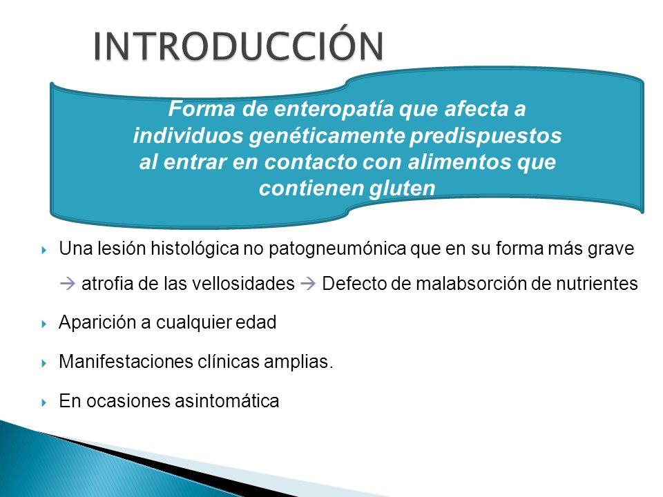 INTRODUCCIÓN Forma de enteropatía que afecta a