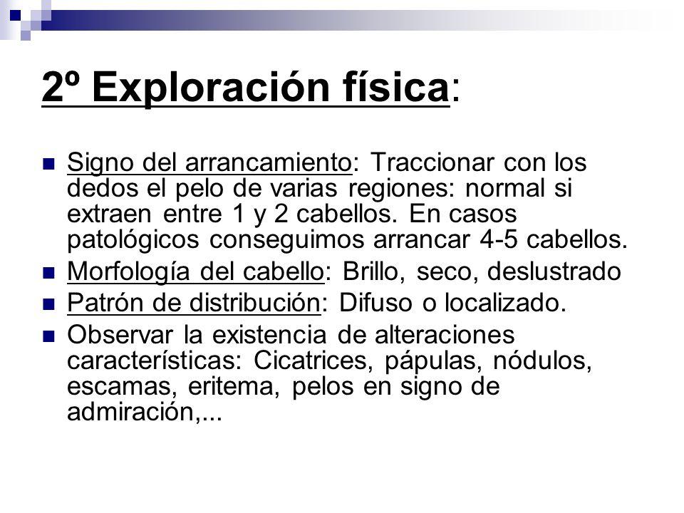 2º Exploración física: