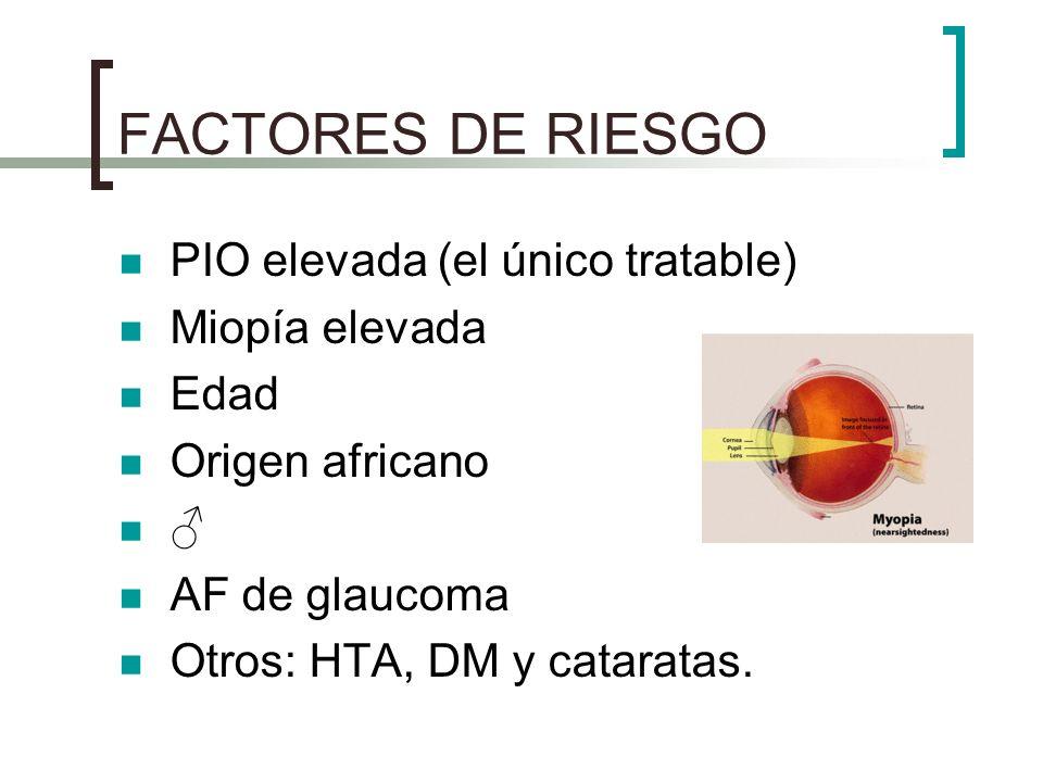FACTORES DE RIESGO PIO elevada (el único tratable) Miopía elevada Edad