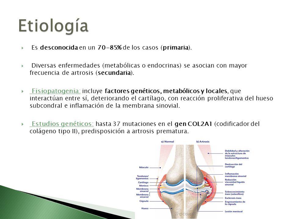 Etiología Es desconocida en un 70-85% de los casos (primaria).