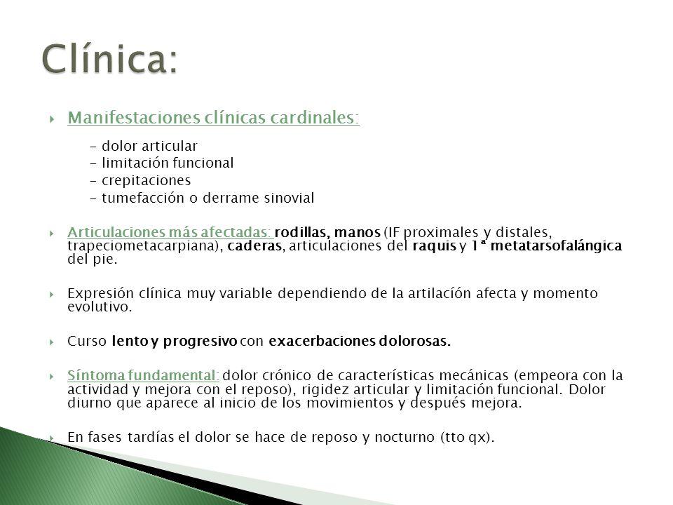 Clínica: Manifestaciones clínicas cardinales: - dolor articular
