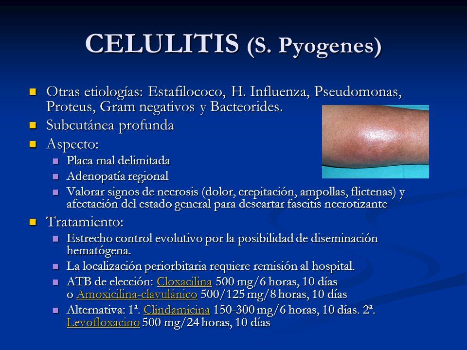 CELULITIS (S. Pyogenes)