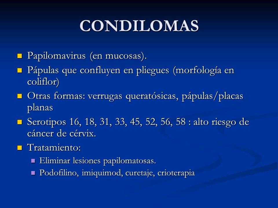 CONDILOMAS Papilomavirus (en mucosas).