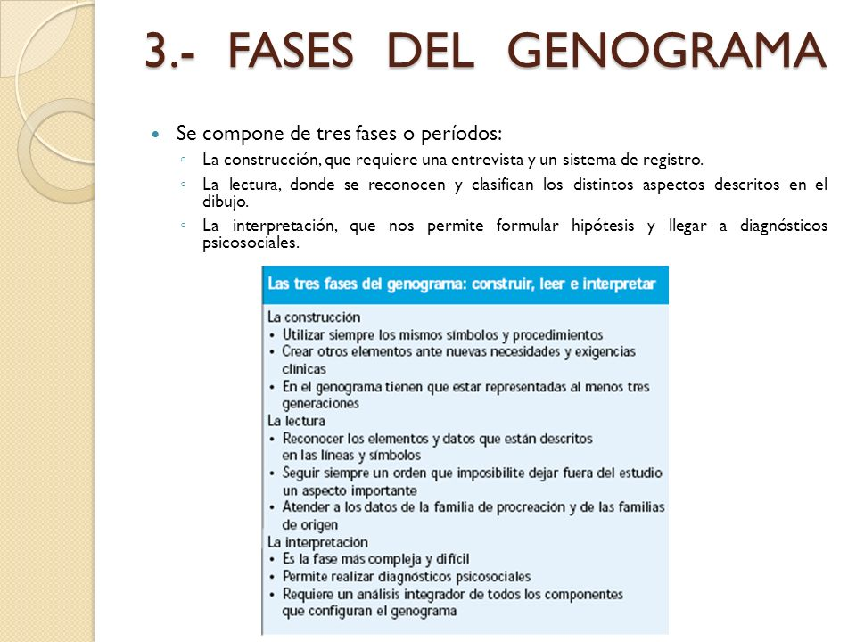 3.- FASES DEL GENOGRAMA Se compone de tres fases o períodos: