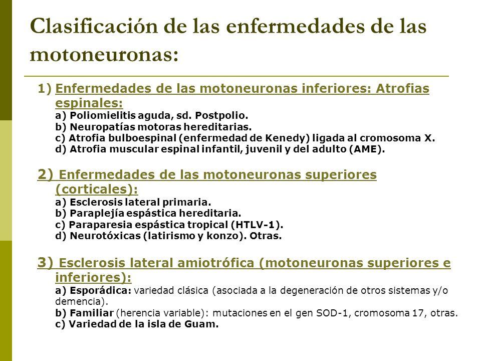 Clasificación de las enfermedades de las motoneuronas:
