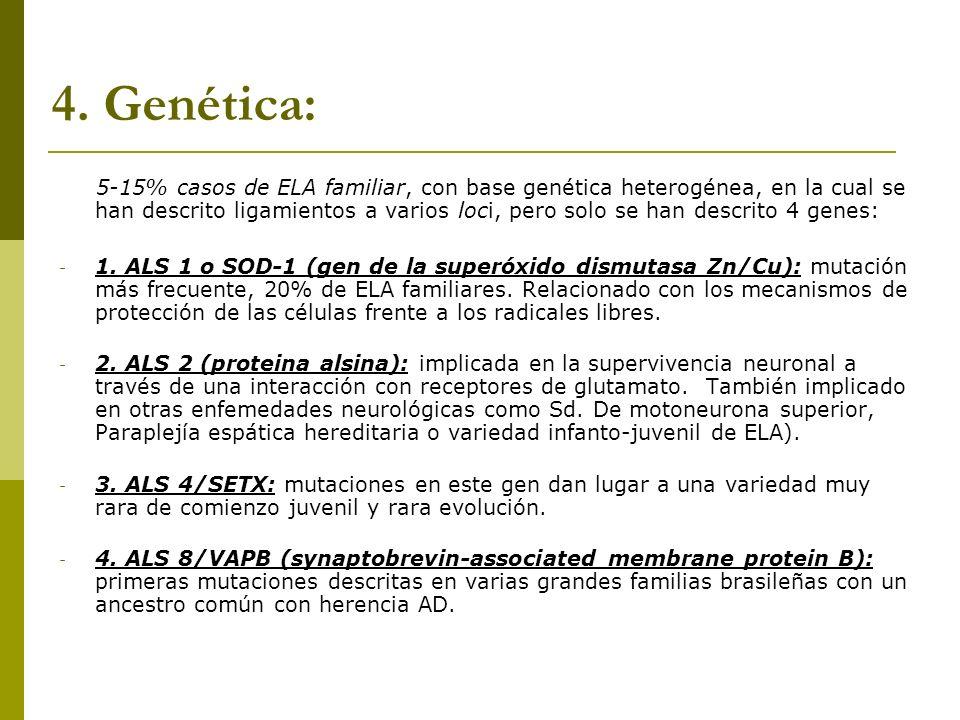 4. Genética: