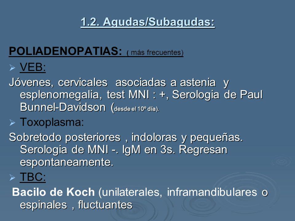 1.2. Agudas/Subagudas: POLIADENOPATIAS: ( más frecuentes) VEB: