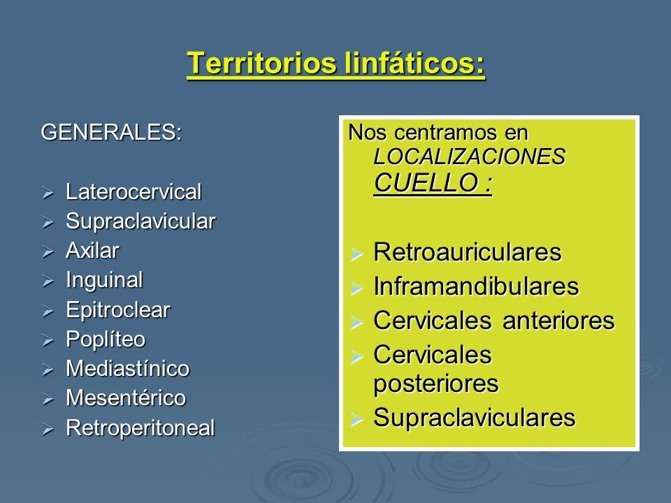 Territorios linfáticos: