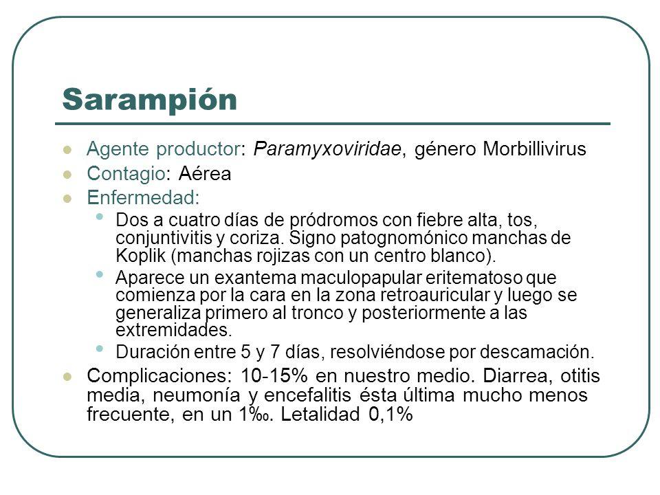 Sarampión Agente productor: Paramyxoviridae, género Morbillivirus
