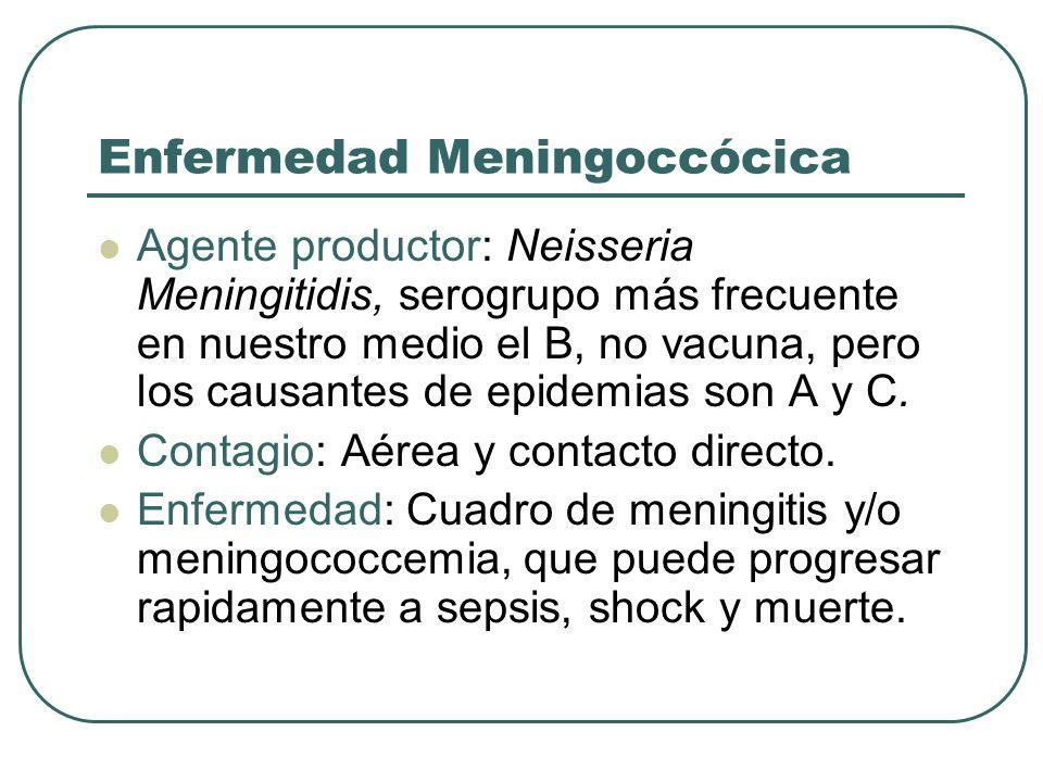 Enfermedad Meningoccócica