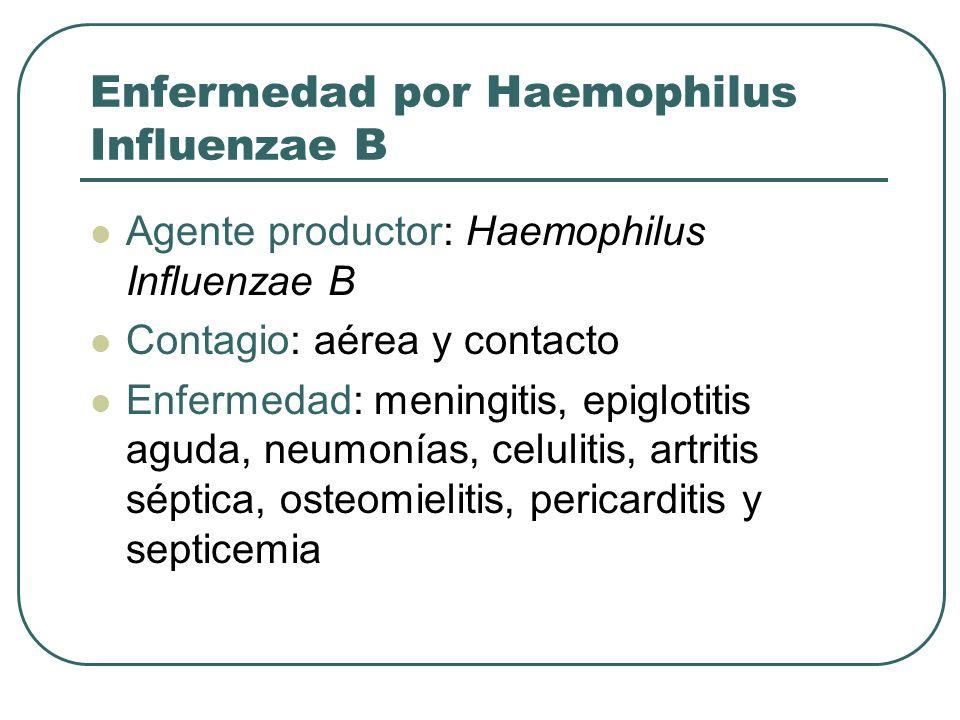Enfermedad por Haemophilus Influenzae B