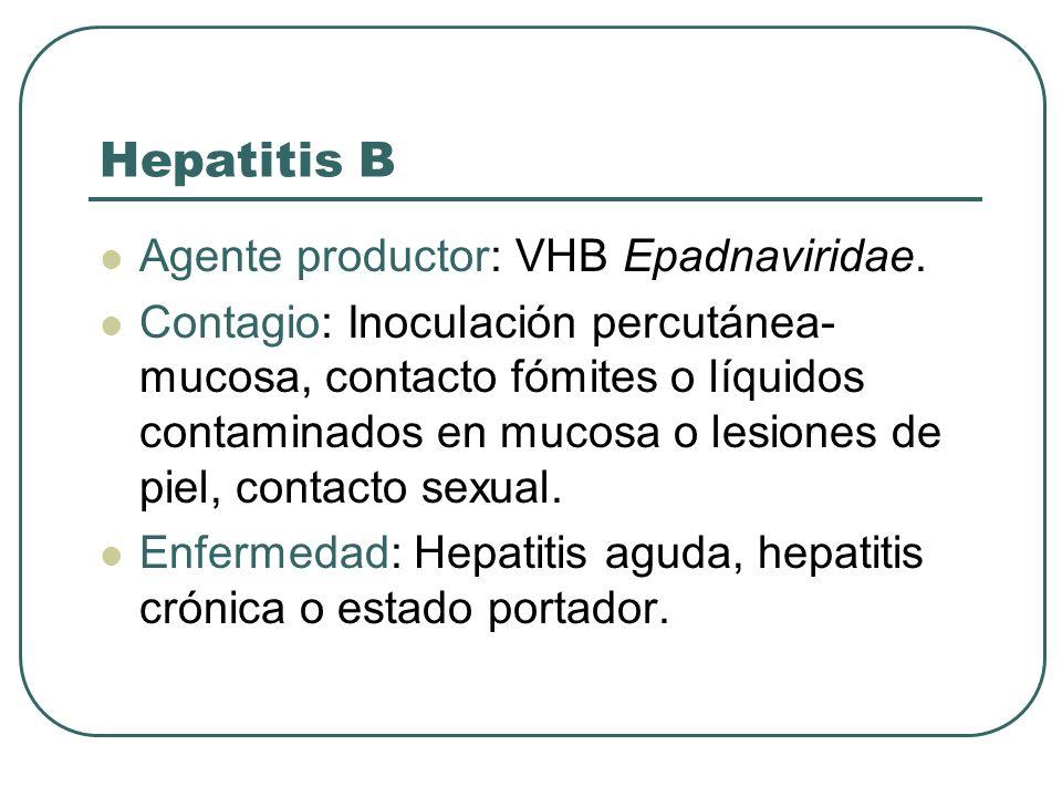 Hepatitis B Agente productor: VHB Epadnaviridae.