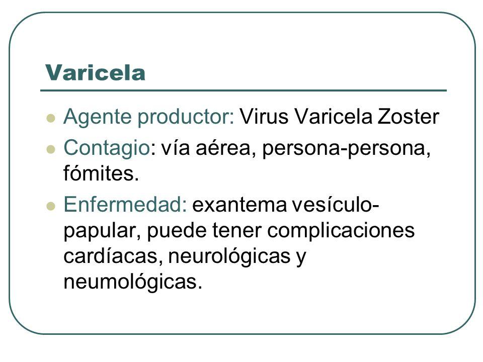Varicela Agente productor: Virus Varicela Zoster