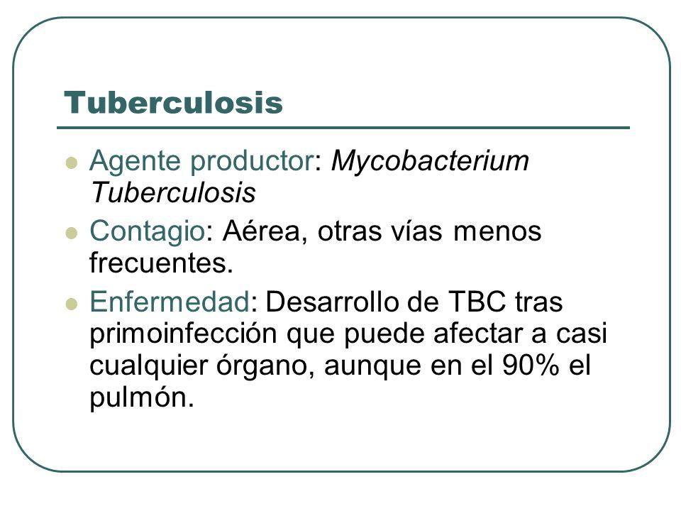 Tuberculosis Agente productor: Mycobacterium Tuberculosis