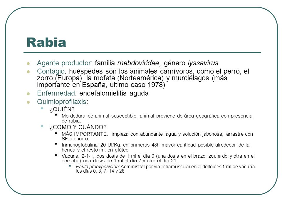 Rabia Agente productor: familia rhabdoviridae, género lyssavirus